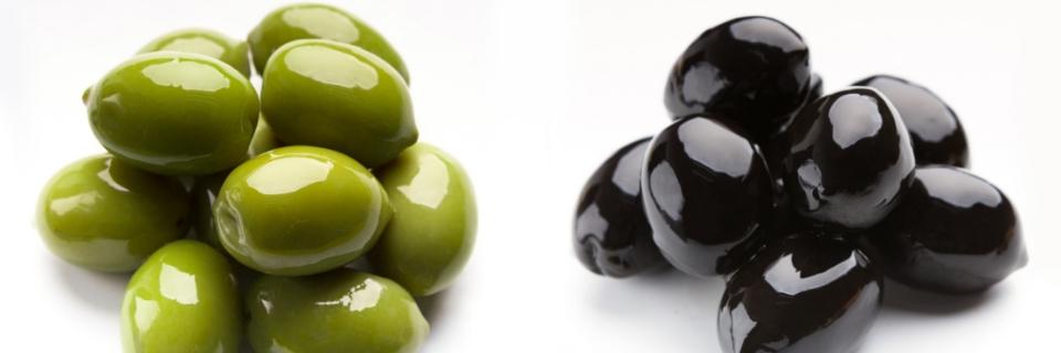 proceso-de-extraccion-del-aceite-de-oliva